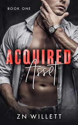 Acquired Asset by author ZN Willett. Book One cover.